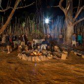 The Roar Camp Fire