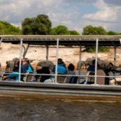 Zambezi-Queen-Gallery-Grid-3-450-x-222